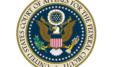 101 Crisis? Blame the Federal Circuit