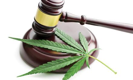 U.S. Cannabis Inventions Grow
