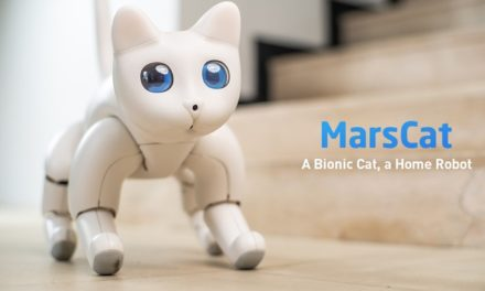 A Bionic Cat & Other Bright Ideas