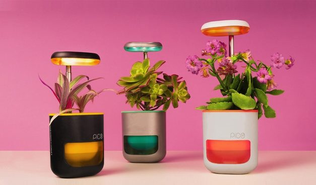 A Smart Plant Growing System & Other Innovations